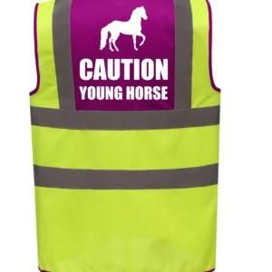 Premium Horse Riding Hi Vis Vests, 4 Colour Options
